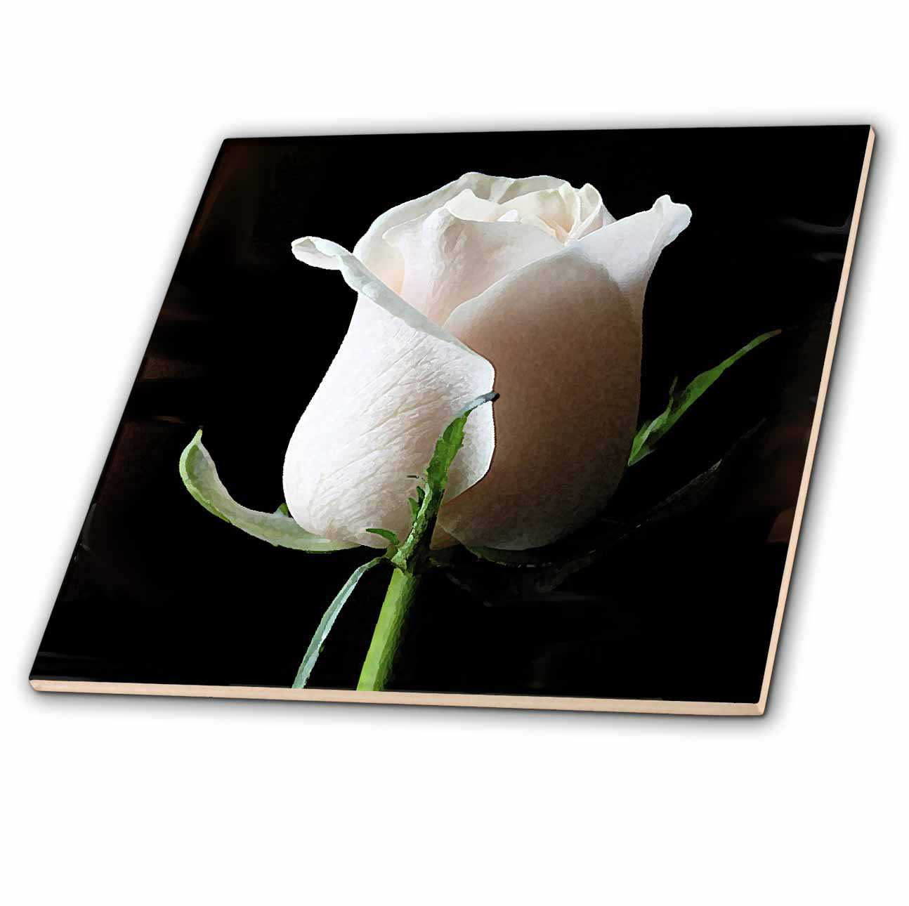3dRose White Rose - Ceramic Tile, 6-inch